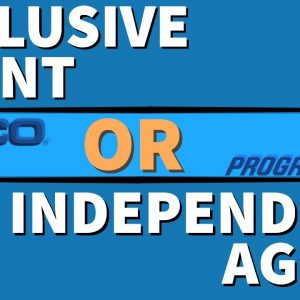 Insurance Agency - Which is better to build and buy from?