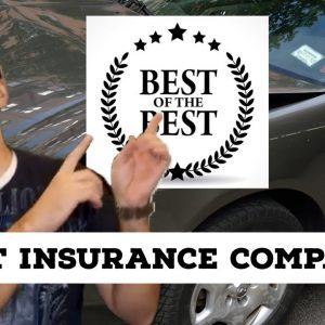Which car insurance company is the best   2020   Car Insurance